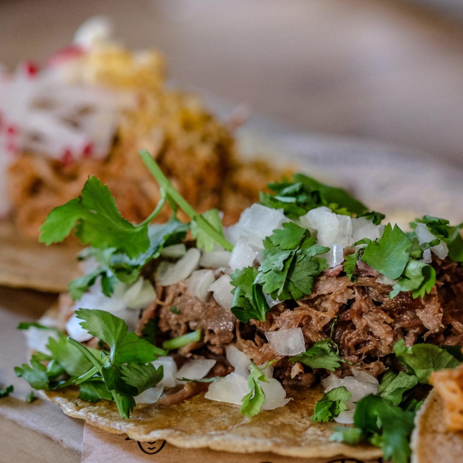 Bester Mexikaner Hamburg Restaurant